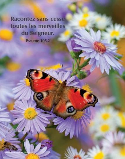 Poster Merveilles du Seigneur
