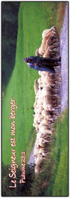 Signet Berger et ses moutons
