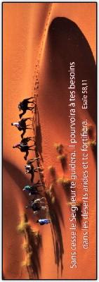 Signet Caravane dans le désert