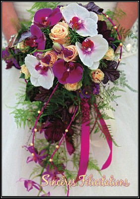 Carte avec message Bouquet d'orchidées (Sincères félicitations)