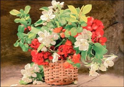 Carte Sans Texte Bouquet dans panier