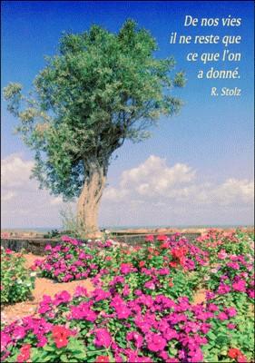 Carte Citation Arbre dans champ de fleurs