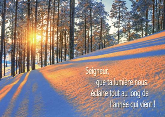 Carte Fin D'année avec Soleil à travers la forêt enneigée