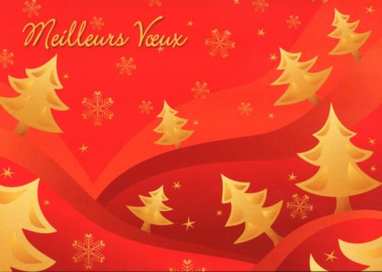 Carte Fin D'année avec Sapins et flocons dorés sur fond rouge (MV)