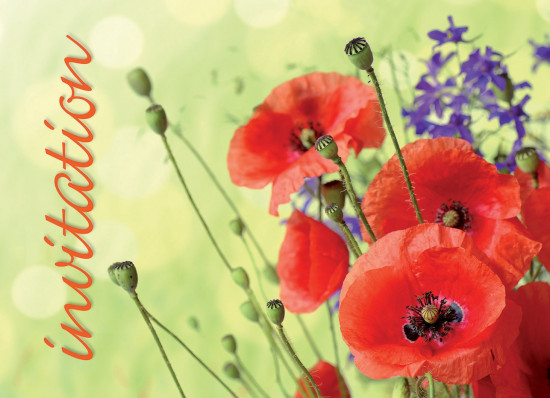 Mini Carte Coquelicots (Invitation)