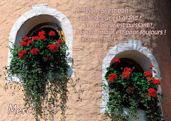 Carte Avec Verset Géraniums rouge sur niche d'un mur(Merci)
