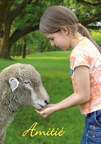Mini carte Fillette donnant à manger à un mouton(Amitié)