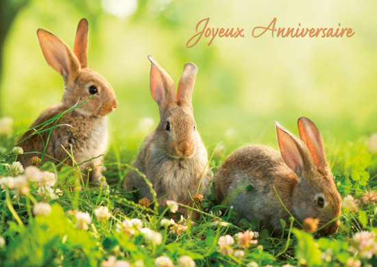 Carte avec message Trois lapins(JA)