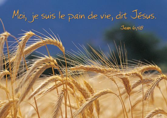 Carte Avec Verset Epis de blés