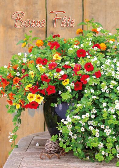 Carte avec message Bouquet de pétunias(Bonne Fête)