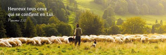 Signet Berger avec ses moutons