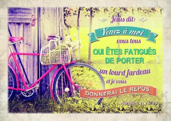 Carte avec verset Vélo adossé à une cabane de jardin.