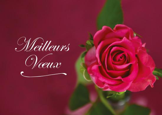 Carte avec message Fin D'année avec Rose sur fond pourpre (MV)