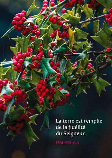 Carte Fin D'année avec  Branche de houx