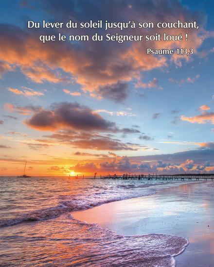 Poster Plage au coucher du soleil