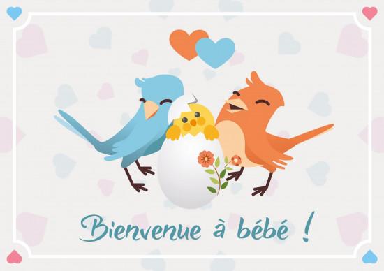 Carte double Naissance Couple d'oiseau et leur poussin dessinés