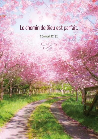 Carte Avec Verset Chemin de campagne sous les arbres en fleur