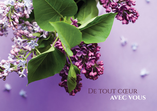 Carte avec message Bouquet de fleurs violettes(De tout coeur...)