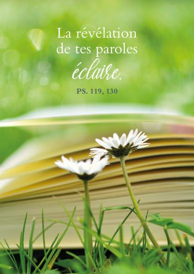Carte avec Verset Marguerites devant un livre posé dans l'herbe