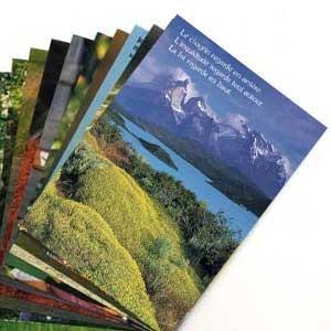 LOT FIN SERIE :10 cartes postales diverses citations