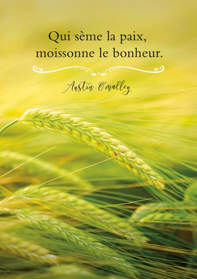 Carte Citation épis de blé dans un champ