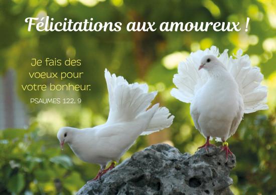 Carte Avec Verset Deux colombes se font la cour(Félicitations)