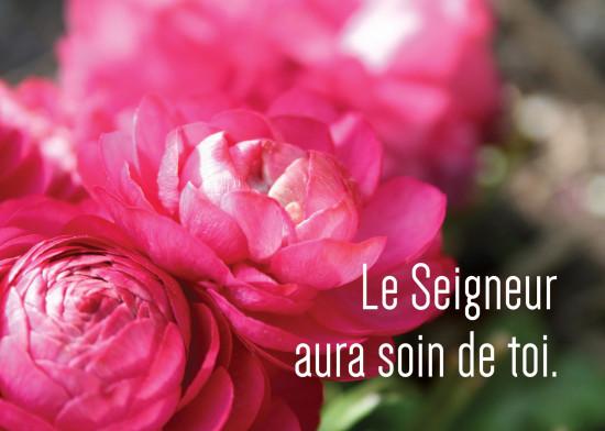 Mini Carte Bouquet de fleurs roses