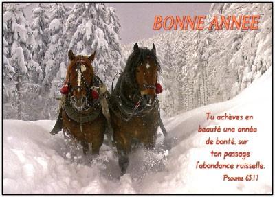 Carte Fin D'année avec Attelage chevaux dans neige (BA)