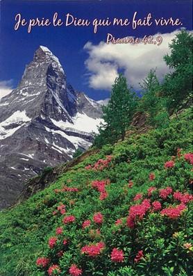 Mini Carte Paysage de montagne