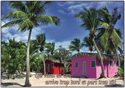Carte Citation Maisons dans palmeraie