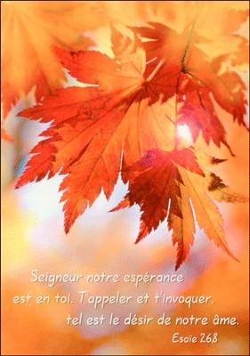 Carte Avec Verset Feuilles d'arbre en automne